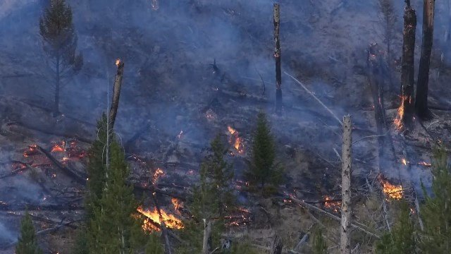 Another 1900 acres burned in Maple Fire outside West Yellowstone