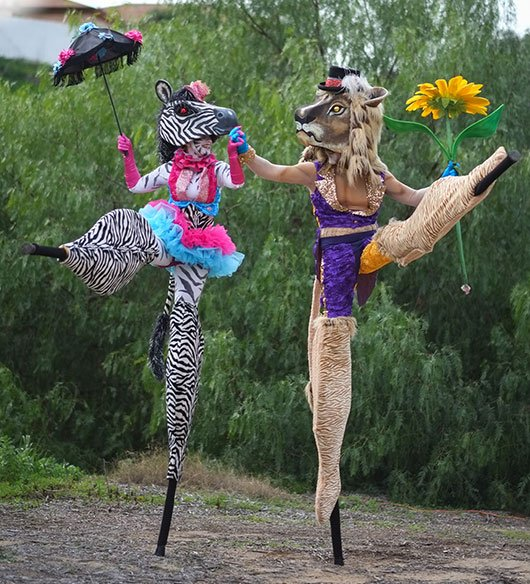 The couple dances in 3.5 ft stilts (Animal Cracker Conspiracy)