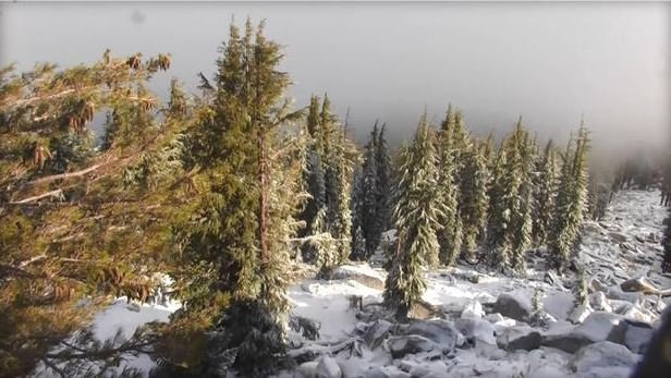 Snow falls in the Sierra Nevada mountains on the last day of summer, Thursday, Sept. 21, 2017 / CBS SAN FRANCISCO