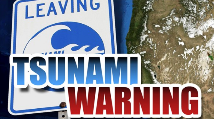 Some people in Charleston get actual tsunami warning during test, NWS says