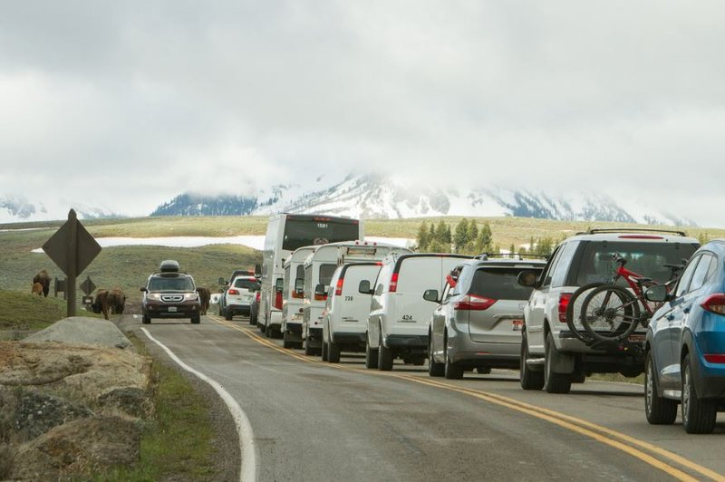 yellowstone national park sets new visitor record in 2016