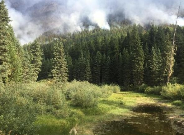 The Sprague Fire Continues To Burn Near West Glacier In Glacier National Park Inciweb